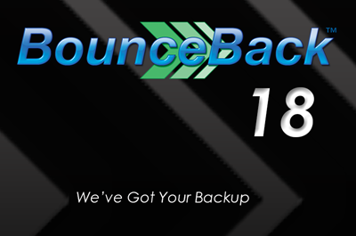 Picture of BounceBack v18