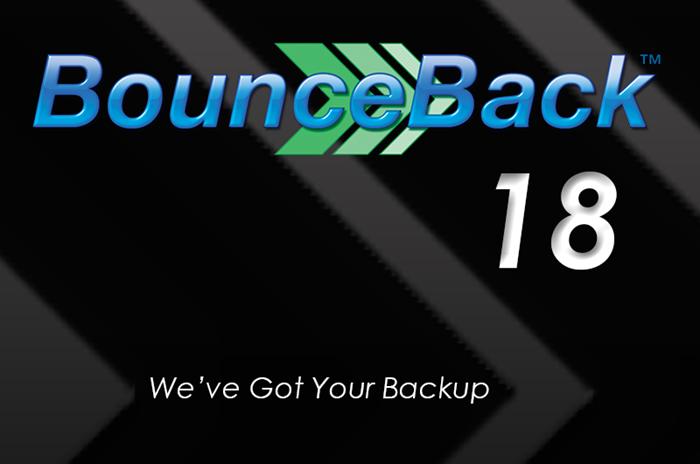 Picture of BounceBack v18