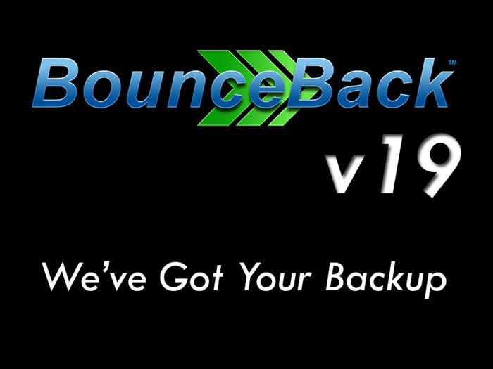 Picture of BounceBack v19